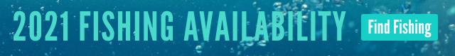 FishPal Availability